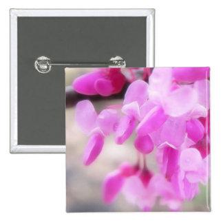 Pink Eastern Redbud Blooms Pins