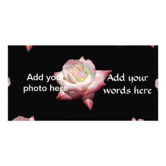 Pink Enameled Roses on Black Card