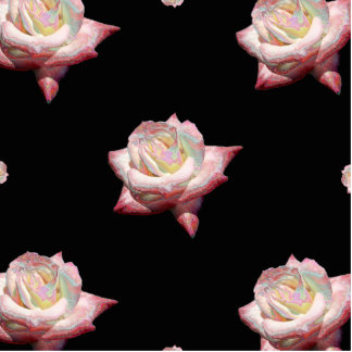 Pink Enameled Roses on Black Standing Photo Sculpture