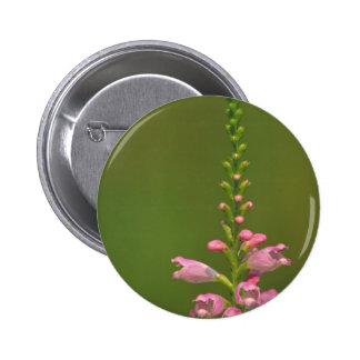 Pink False Dragonhead Flower Buttons