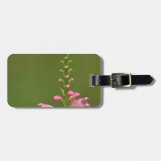 Pink False Dragonhead Flower Bag Tag