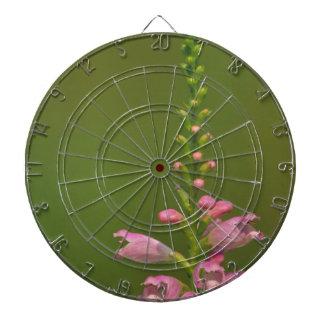 Pink False Dragonhead Flower Dart Board