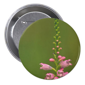 Pink False Dragonhead Flower Pinback Button