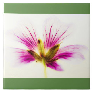 Pink Feather Flower Tile