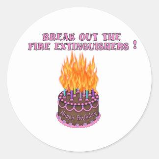 Pink Fire Extinguishers Birthday Cake Classic Round Sticker