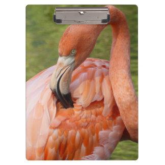 Pink Flamingo 02.2 Clipboard