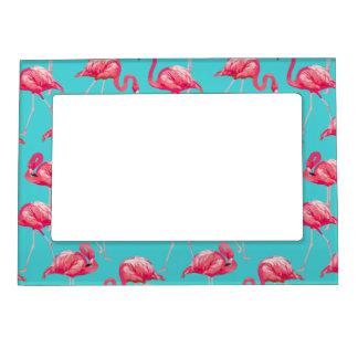 Pink flamingo birds on turquoise background magnetic frame