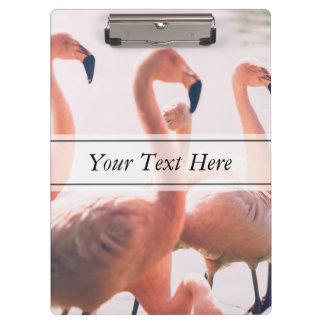Pink Flamingo Flock, Bird Photography Clipboard