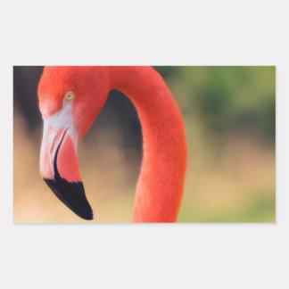 Pink Flamingo Head Rectangular Sticker
