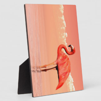 Pink flamingo in the water - 3D render Plaque