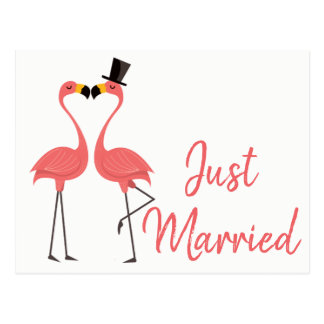 Pink Flamingo Just Married Tropical Wedding Love Postcard