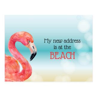 Pink Flamingo on Bokeh Beach New Address Postcard