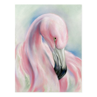 Pink Flamingo Pastel Art Postcard