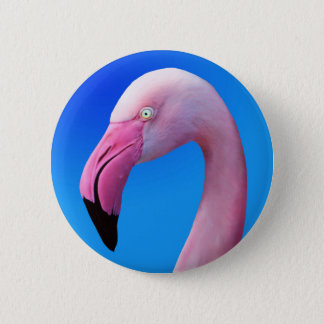 Pink Flamingo Portrait CloseUp Buttons