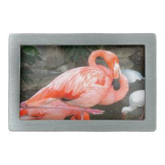 Pink Flamingo Rectangular Belt Buckles