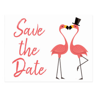 Pink Flamingo Save The Date Engagement Wedding Postcard