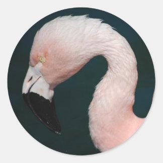 Pink Flamingo Stickers
