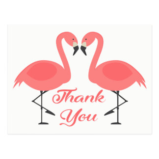 Pink Flamingo Thank You Tropical Wedding Love Postcard
