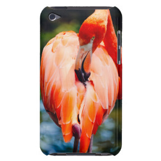 Pink Flamingo Vertical Animal Photography iPod Touch Case-Mate Case