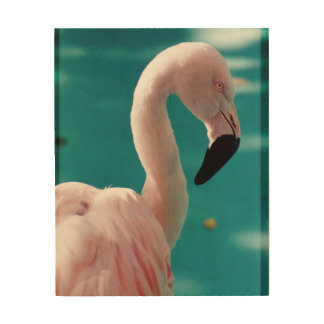 Pink flamingo wood wall art