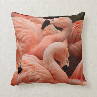 Pink flamingos cushion