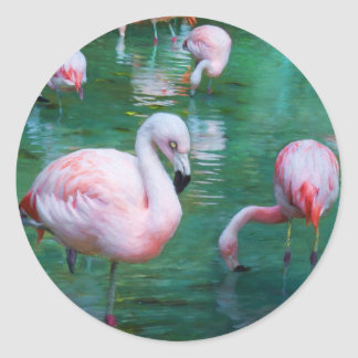 Pink Flamingos in a Pond Classic Round Sticker