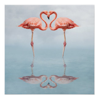 Pink Flamingos in Love Poster