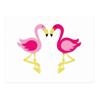Pink Flamingos Postcard