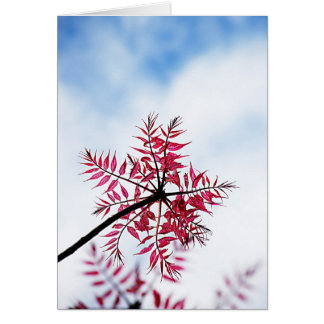 Pink Floral Design Art Glow Gradient Digital Art L Greeting Cards