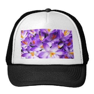 Pink Floral Design Art Glow Gradient Digital Art L Hat