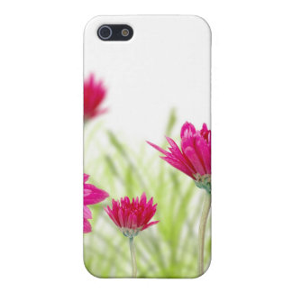 Pink Floral iPhone Case 4 iPhone 5 Case