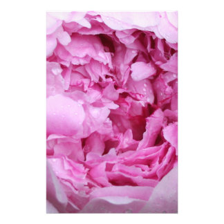 Pink Floral Petals Personalised Stationery