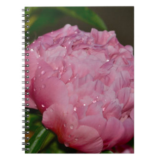 Pink Floral Photo Journal Notebooks