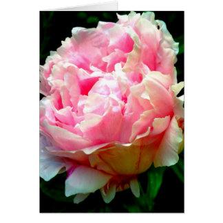 Pink Flower Blank Greeting Card