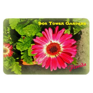 Pink Flower Bok Tower Gardens Lake Wales Florida Magnet