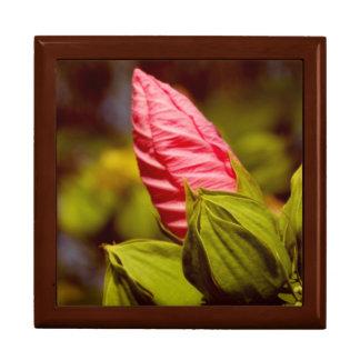 Pink Flower Bud Floral Tile Gift Box, Golden Oak Gift Box