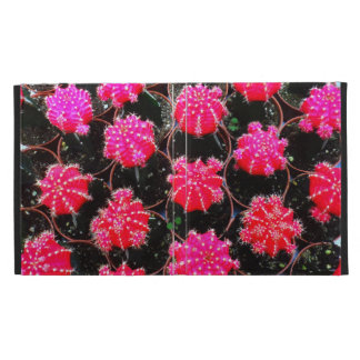 Pink Flower Cactus Plant Photography iPad Folio Covers