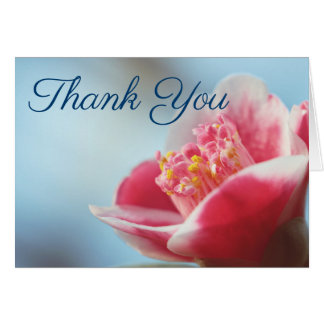 Pink Flower Camelia Thank You Notes