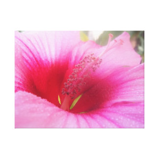 Pink Flower Canvas Decoration Stretched Canvas Print