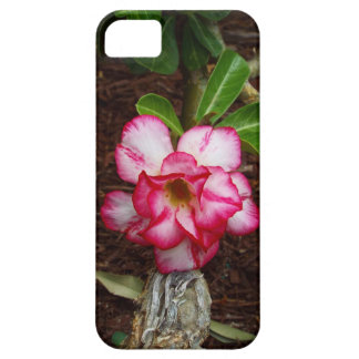 Pink Flower Case For The iPhone 5