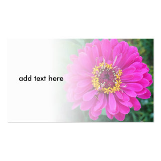 pink flower closeup pack of standard business cards