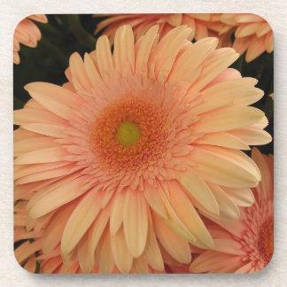 Pink Flower Cork Coaster