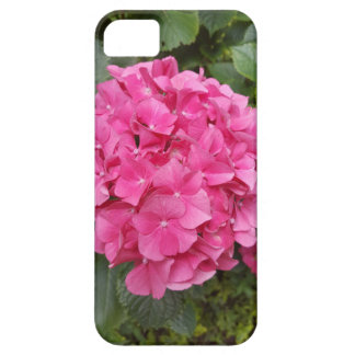 Pink Flower Floral Photography Nature iPhone 5 Cases