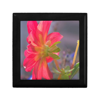 Pink Flower Gift Box
