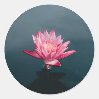 Pink Flower Greeting Card set Classic Round Sticker