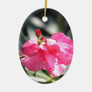 Pink flower, Italy Ceramic Oval Decoration
