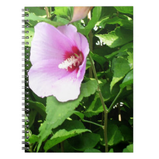 PINK Flower Lilly TEMPLATE Reseller Holiday Gifts Note Book