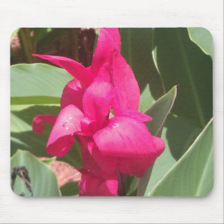 Pink Flower Mouse Pad