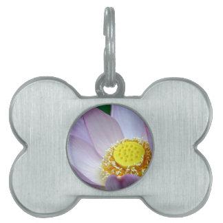 Pink flower of lotus pet name tags