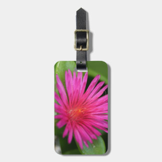 Pink Flower of Succulent Carpet Weed Luggage Tag